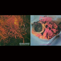 CARNAGE/CADAVER - Dark Recollections/Hallucinating Anxiety (CD)